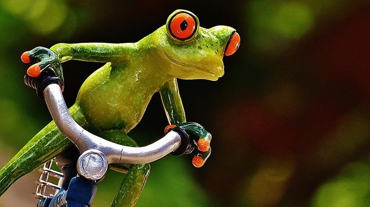 Betrunken auf dem Fahrrad ...